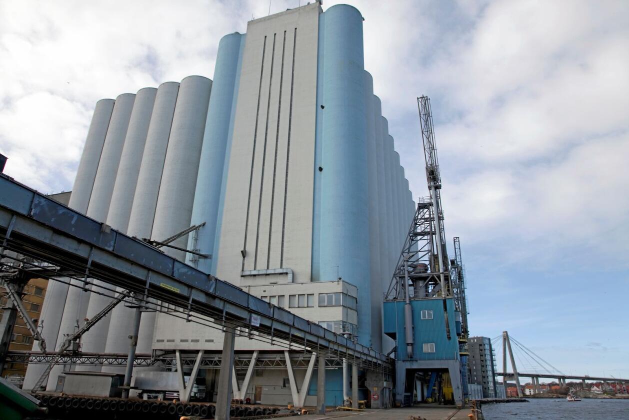 Landets største kornlager, Stavanger Havnesilo, er eid av Felleskjøpet Agri. Her ønsket flere partier å ha et statlig eid beredskapslager for korn. Foto: Nationen