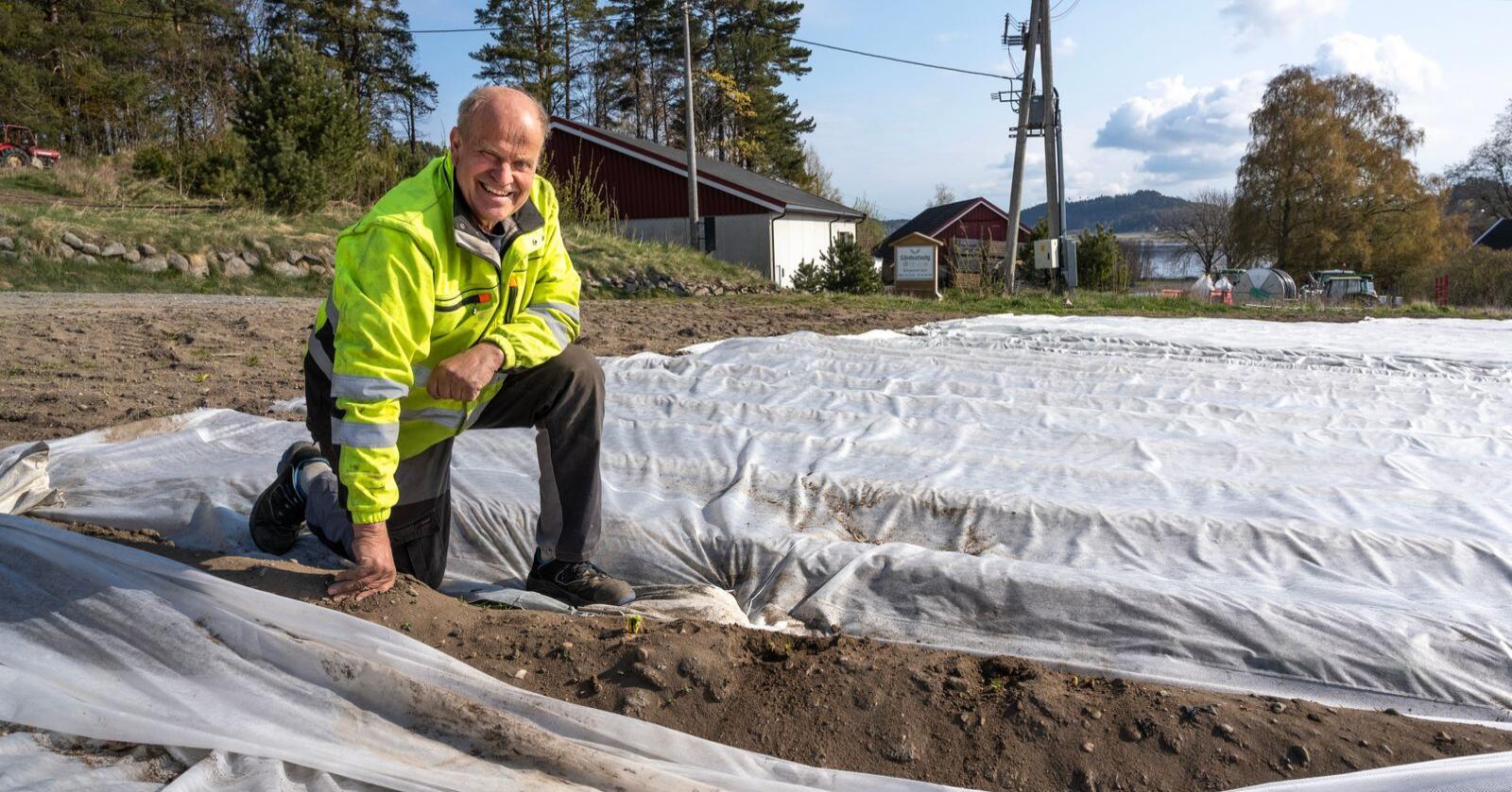 Potetbonde: Tor Helge Arnevik  følger nøye med  i potetåkeren. Alle foto: Erling Fløistad