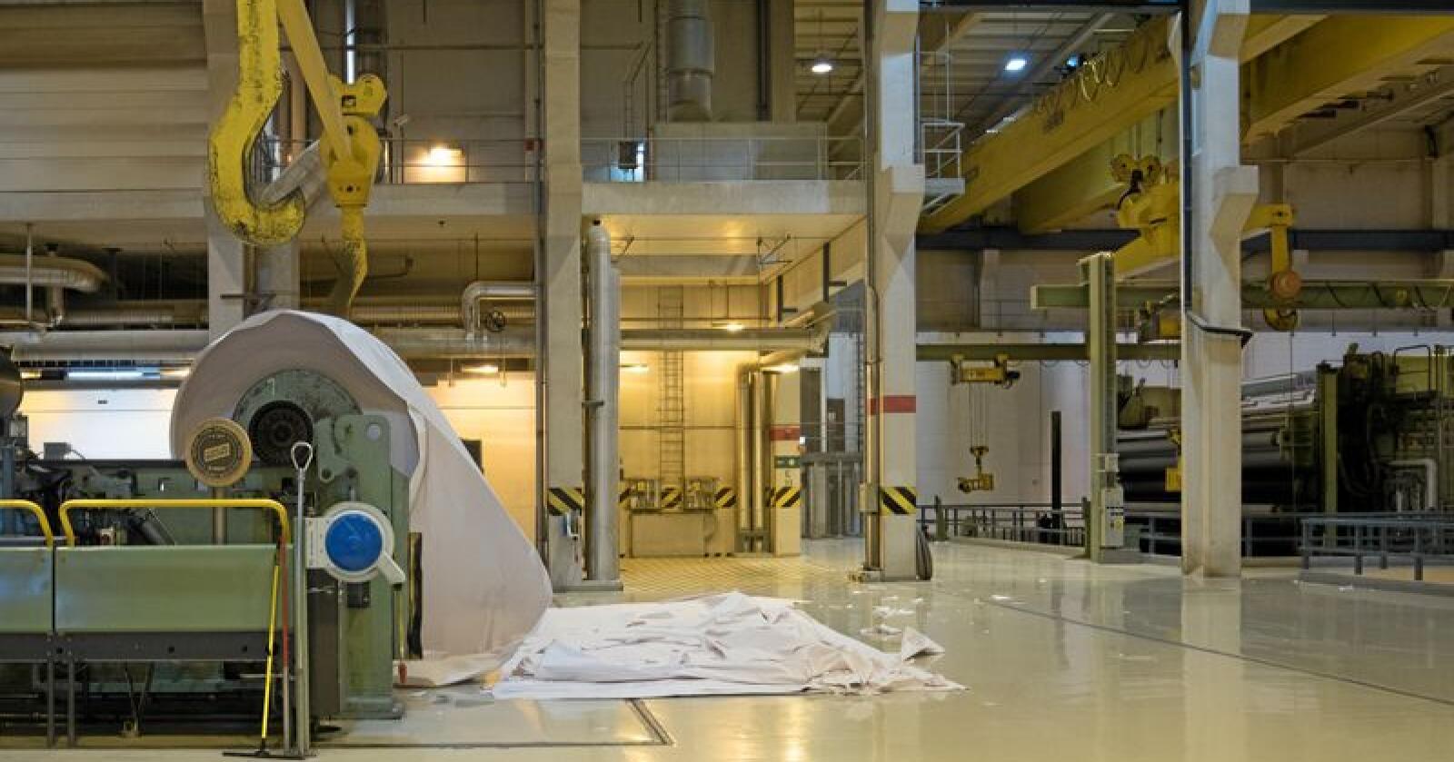 Norske Skog Skogn AS og Norske Skog Saugbrugs AS har inngått en åtteårig industrikraftavtale. Bildet er fra Norske Skog Saugbrugs AS i Halden. Foto: Vidar Sandnes