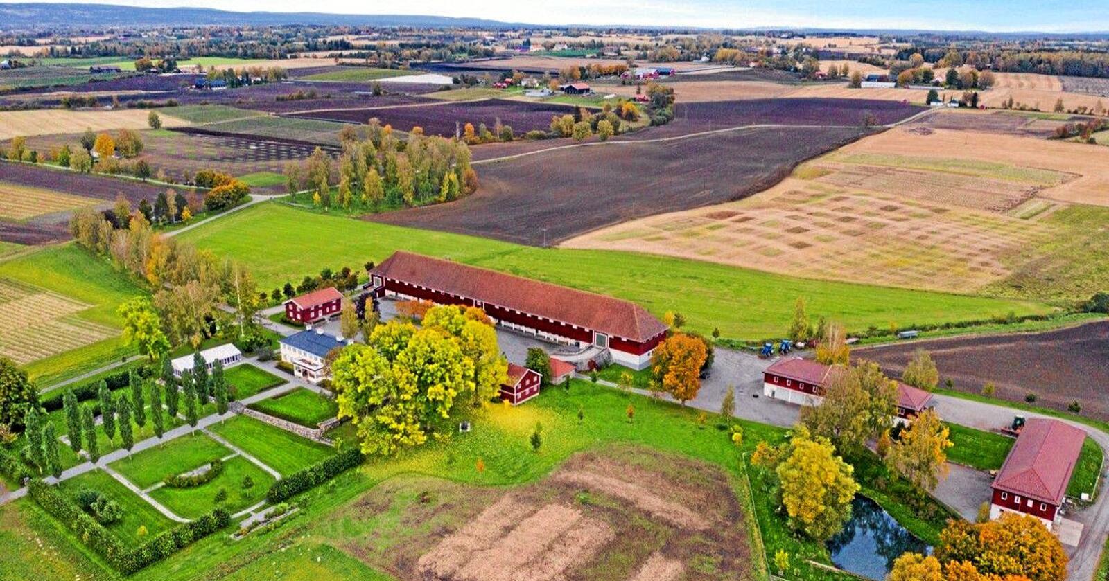 Staur Gård i Stange blei seld til advokat Ola Haugen. Foto: Tegneby & Grønnerød Landbruksmegling