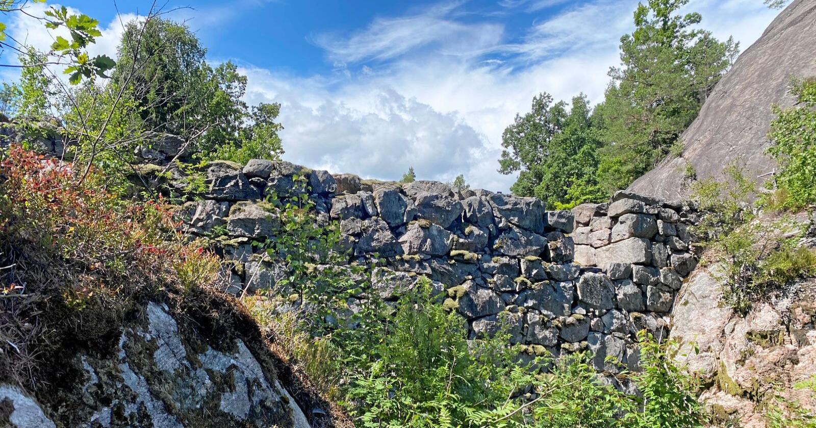 Foto: Svein Ove Hansli