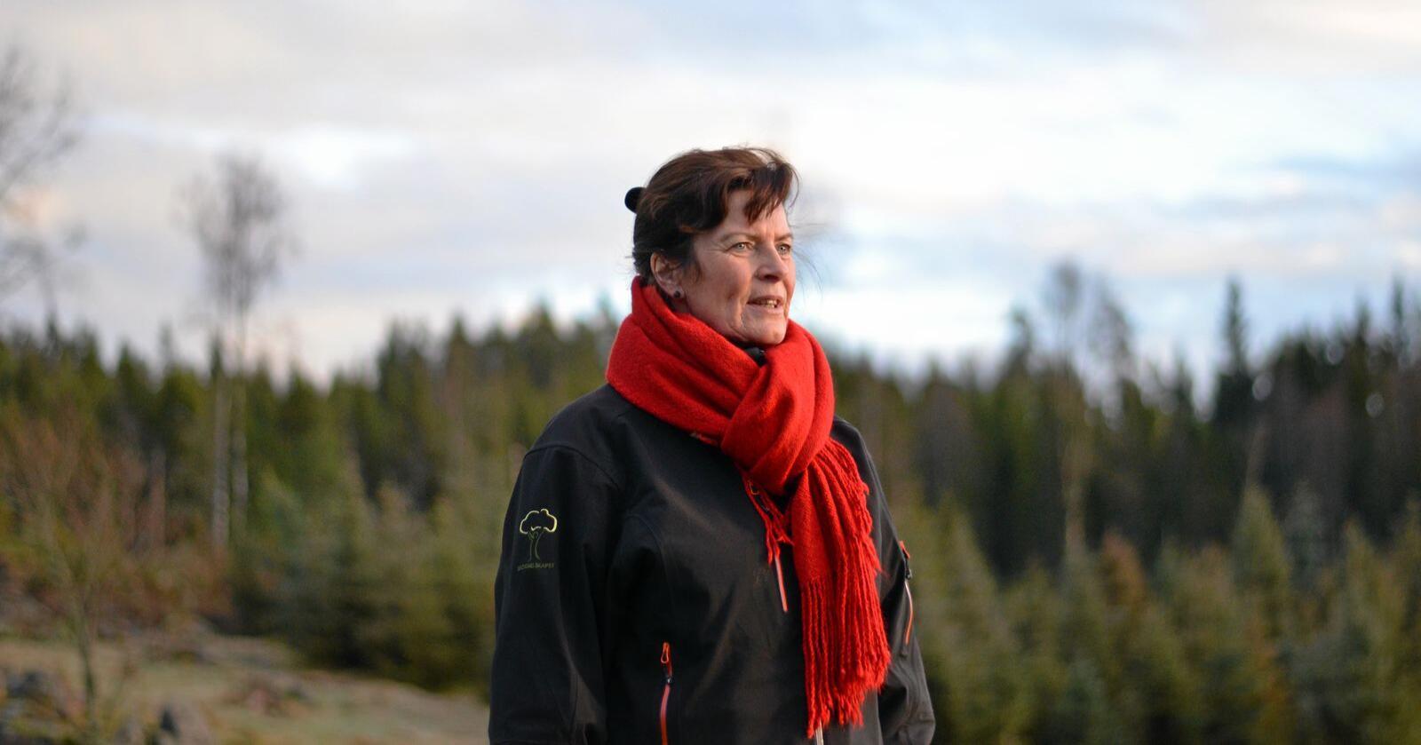 Hjemkommunen til Merete Furuberg opplevde tirsdag en tragisk slakteulykke. Foto: Benjamin Hernes Vogl