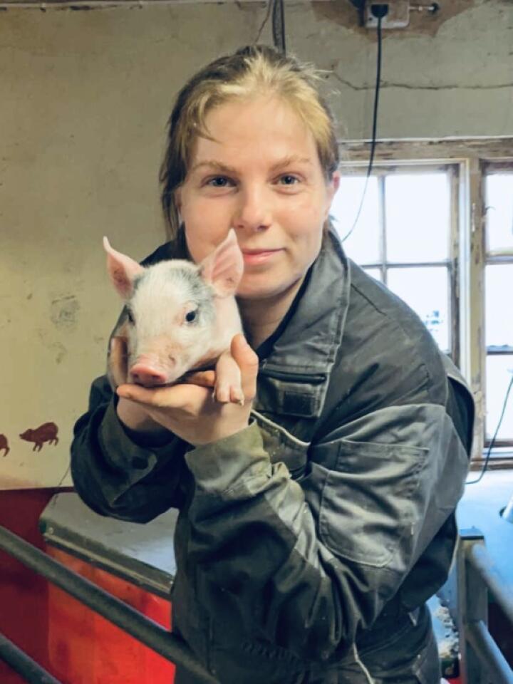 Ny bonde: Helene Helgeberg hadde ikke drevet med gris før da hun kjøpte gård i mars. Hun hoppet i det, og har ikke angret. (Alle foto: Privat)