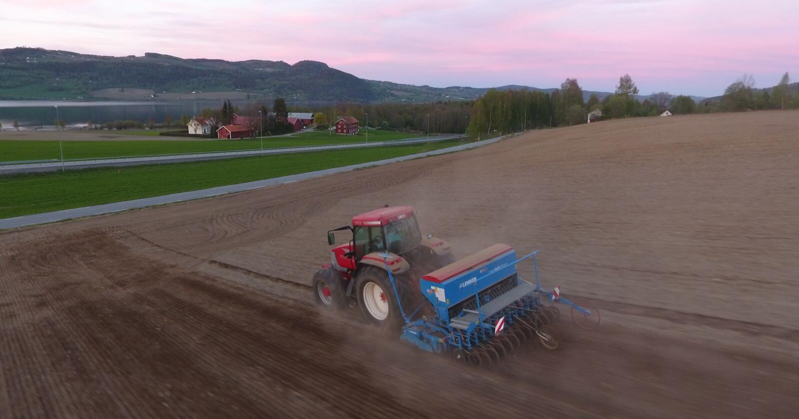 For kornprodusenter økes prisene med 10 og 17 øre per kilo og arealtilskuddet med ni kroner per dekar. Arkivfoto: Norsk Landbruk
