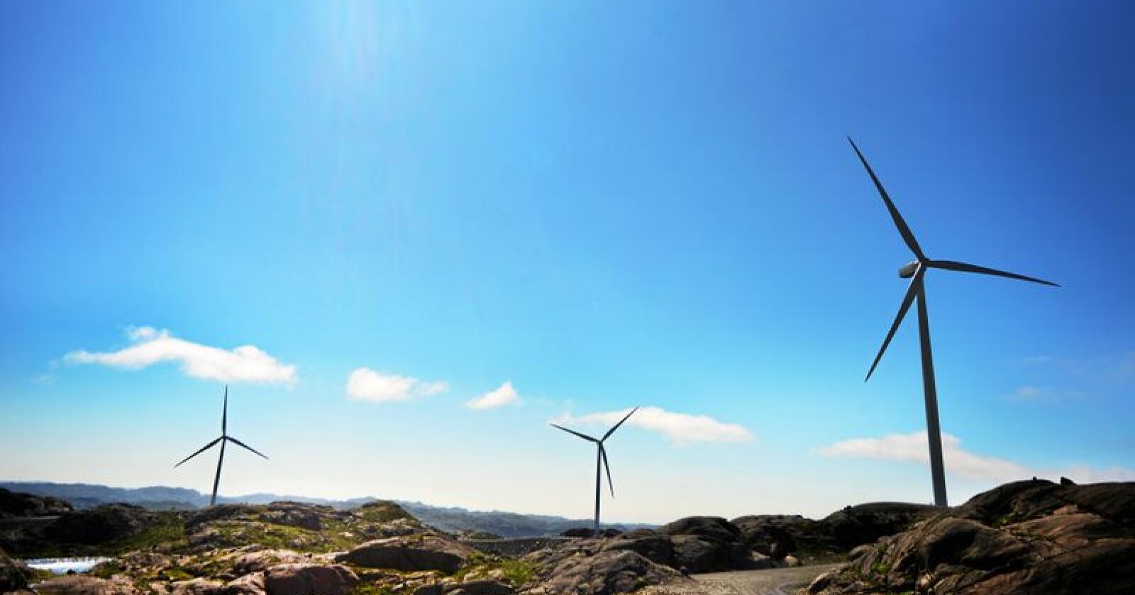 Norsk Vind Energi tar til orde for standariserte utgangspunkt for avtaler med grunneierne. Foto: Siri Juell Rasmussen