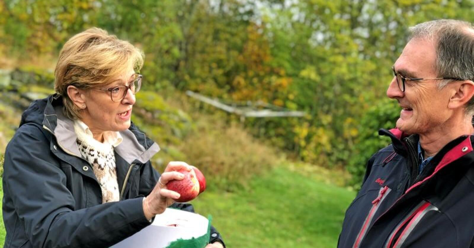 Sigird Hjørnegård mener en styrking av importvernet, slik at man får solgt de norske eplene foran de utenlandske, er nødvendig for å nå målene Harald Moskvil har for norsk landbruk. Foto: Lars Bilit Hagen
