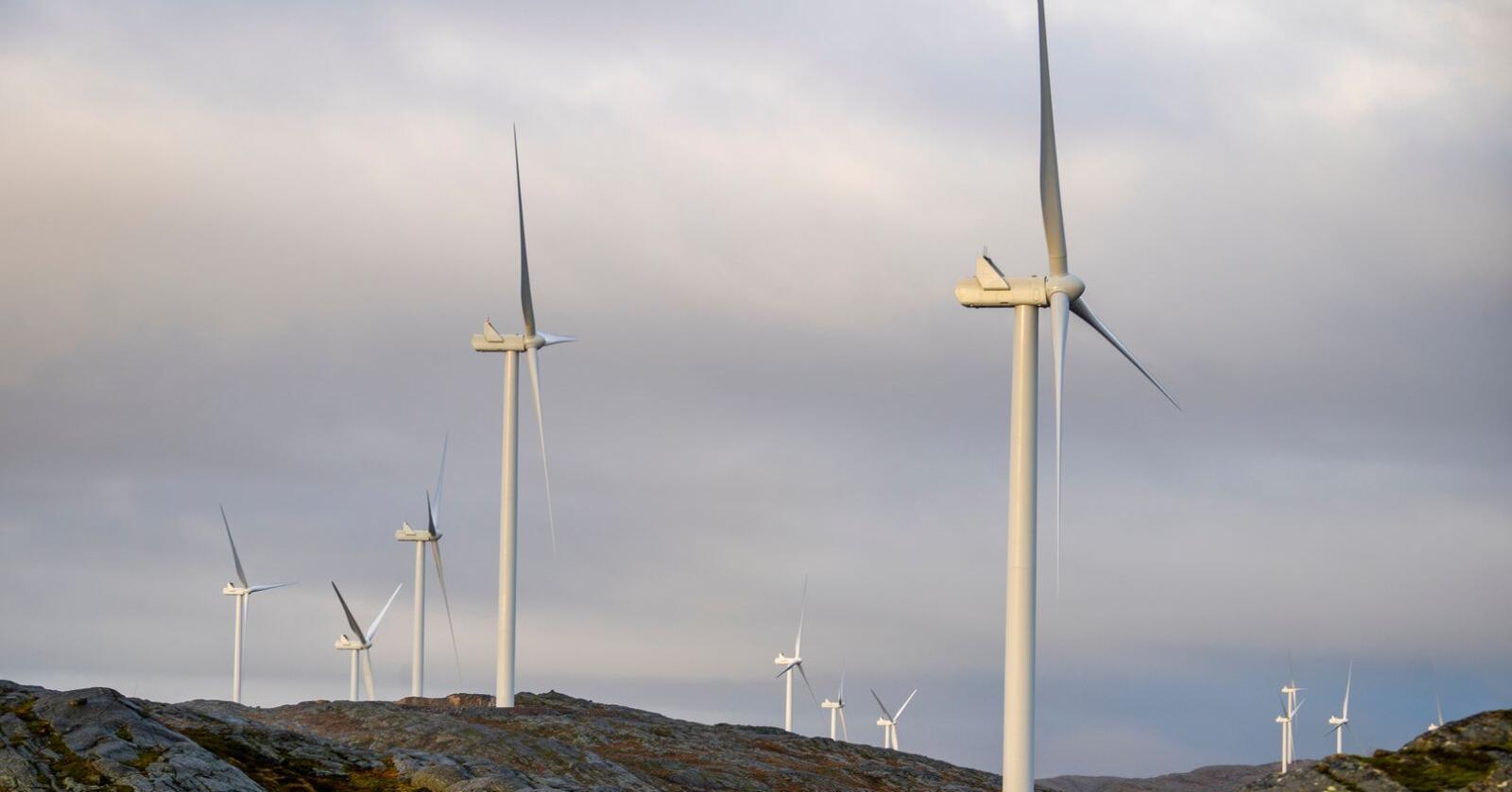 Storheia vindpark er den største av vindparkene i porteføljen til Fosen Vind og den andre av vindparkene som ble bygget. Men utbygging av vindkraft på land er blitt en omstridt sak også internt i flere politiske partier. Foto: Heiko Junge / NTB