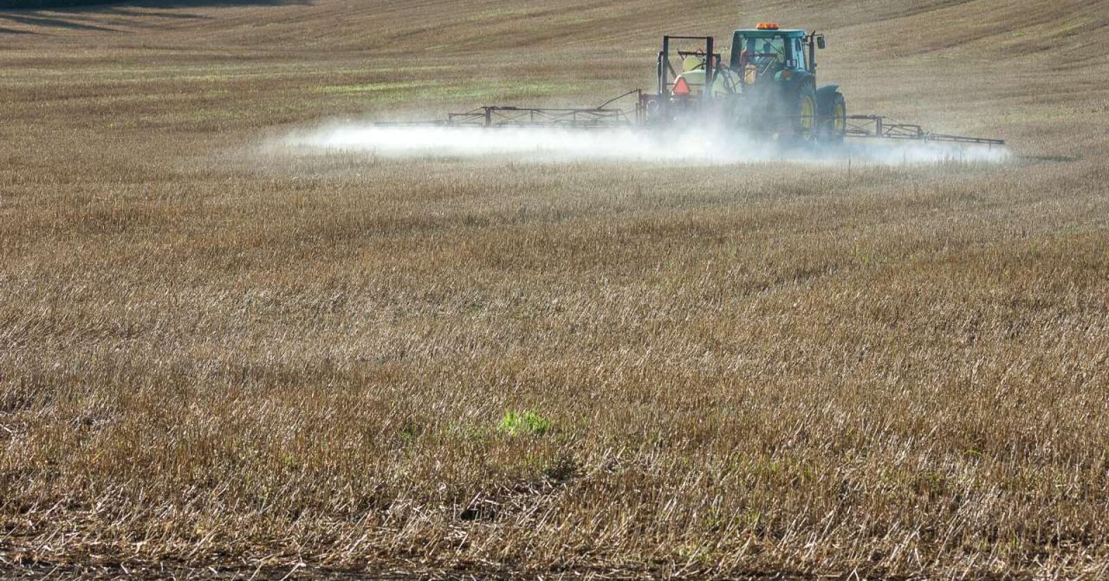 Nibio har utført en studie på at holdningsskapende arbeid kan være bedre enn økte avgifter for å redusere bruken av plantevernmidler