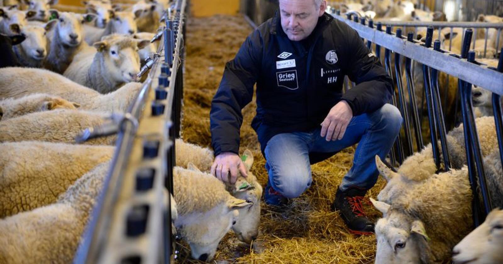 Bonde Henrik Halleland (KrF) er ordfører i Rogaland-kommunen Finnøy. Han kommer til å stemme for det blå alternativet fredag, og vil at KrF skal ta over Landbruksdepartementet i en ny regjering. Foto: Stavanger Aftenblad/ NTB Scanpix
