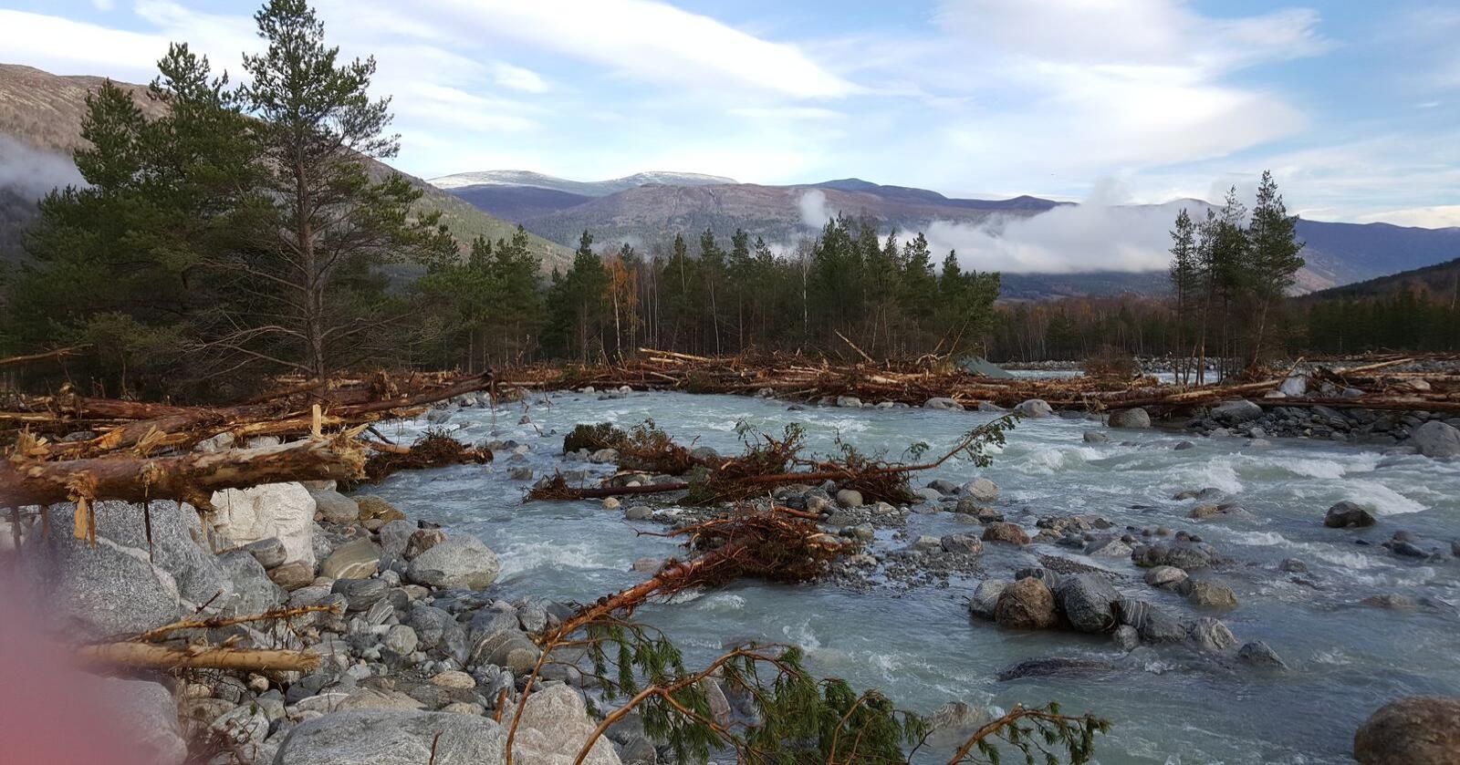 Ulike tiltak kan bidra til å redusere faren for flomskader, skriver NVE. Bildet er fra flommen i Skjåk i oktober 2018. Deler av elva «Skjøla» laget nytt far i flommen. (Foto: Ola Råbøl)