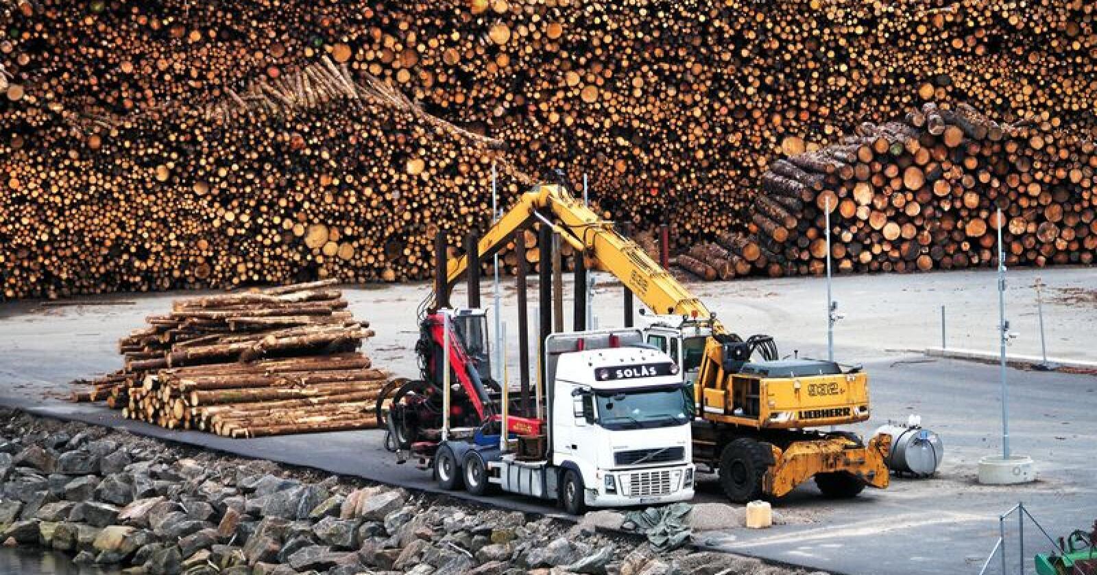 Tømmerkaien i Mandal var ferdig i 2018, og blir omtalt som en av landets fineste. Foto: Siri Juell Rasmussen