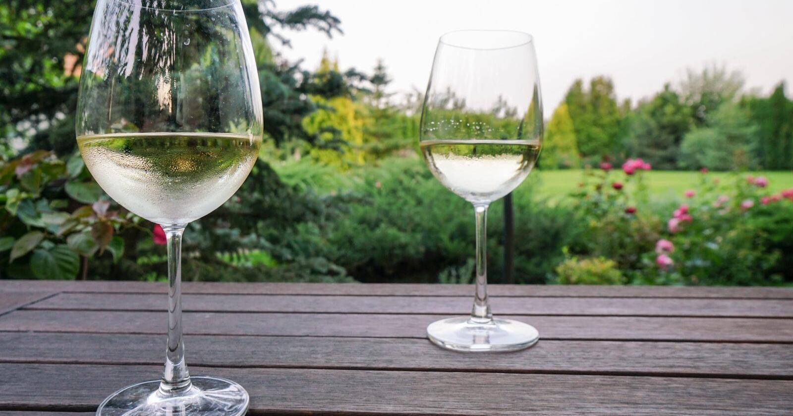 Annerledes: I byen møttes vi på hippe barer og drakk knusktørr hvitvin. Når innvier jeg helga på stabburstrappa. Det har blitt mitt utested, skriver Ellen Fauske Bleness. Foto: Berna Rikur/Mostphotos