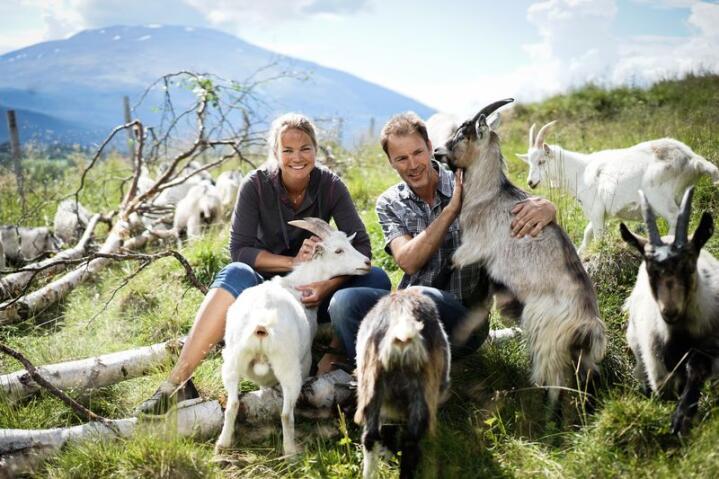 Anne Ragnhild Thomlevold Rønning og Lars Rønning driver Heidrun AS, en nisjematbedrift på Tynset i Nord-Østerdalen, og videreforedler småfekjøtt ved bruk av lokale råvarer. Alle foto: Benjamin Hernes Vogl