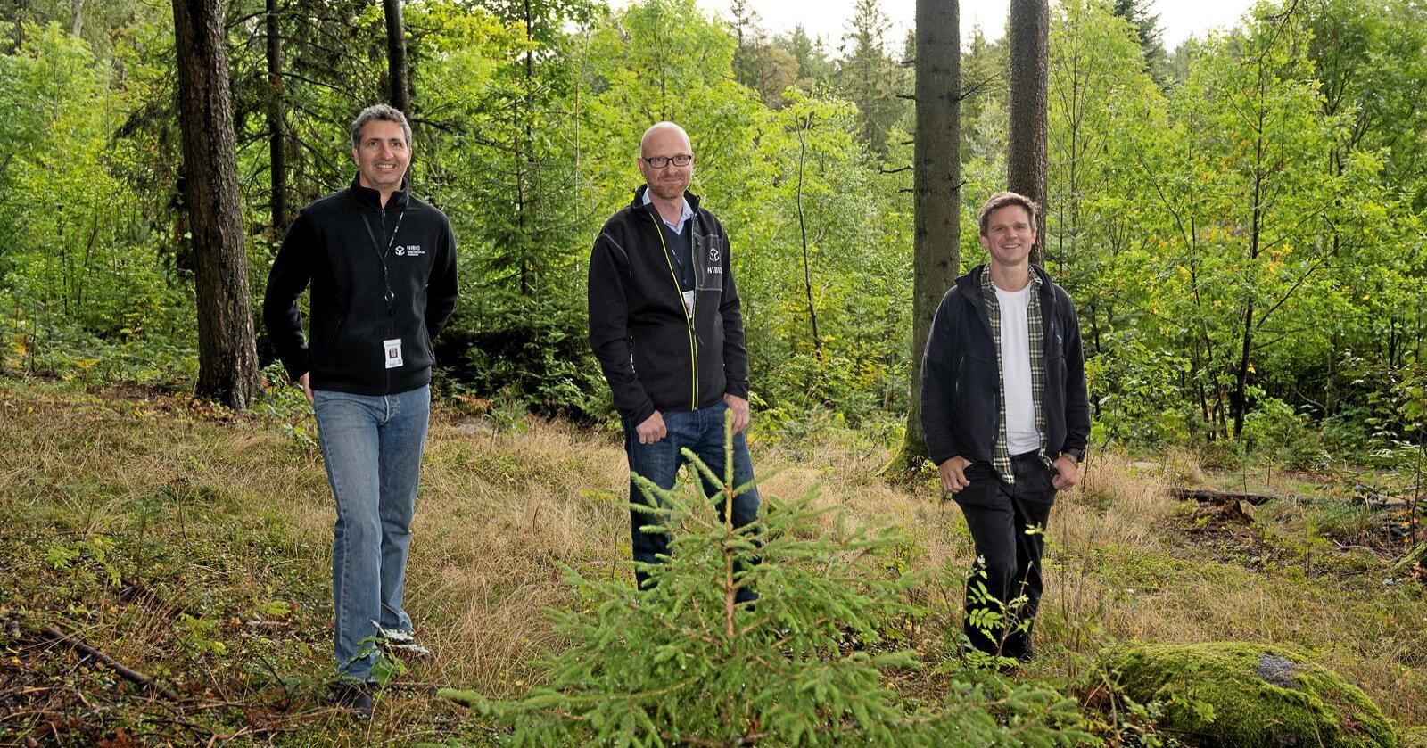 Har utviklet: Seniorforsker Johannes Breidenbach og forskerne Marius Hauglin og Johannes Rahlf har deltatt i utviklingen av den nye digitale kartløsningen som du finner på Nibios kartløsning Kilden, under Skogportalen. Foto: Erling Fløistad, Nibio.