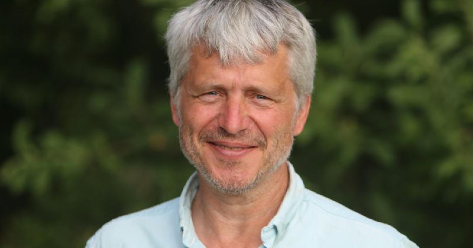 Finnes: Det finnes økoplommer i massevis, påpeker Økologisk Norge-leder Børre Solberg. (Foto: Dorthe Bechmann)