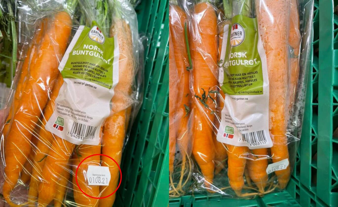 Disse norske gulrøttene kjøpte Borgny Sletten på Kiwi Kvam på Vinstra i Nord-Fron i Innlandet. Grønnsakene er helt riktig merket med Nyt Norge, men den lille hvite lappen (se rød ring) med opprinnelsesland Italia, skulle aldri vært der. Foto: Borgny Sletten