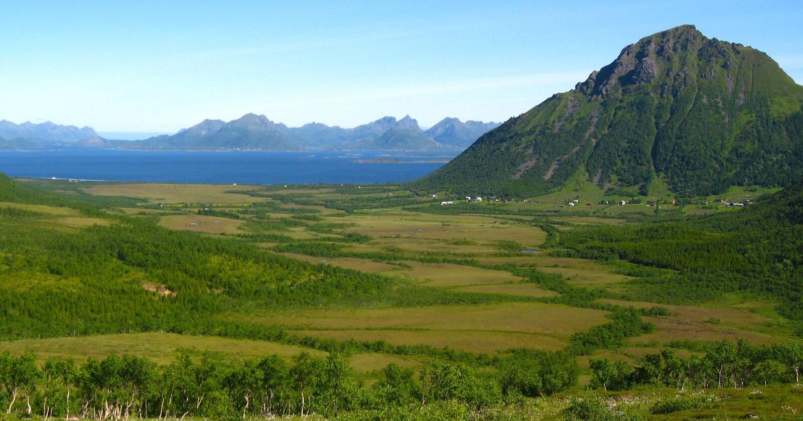 Opptak av karbon er en viktig del av jordbrukets klimaavtale med staten. På bildet sees myrområdene i Breidvikdalen (Hadsel i Nordland). De store myrkompleksene i Nord-Norge binder enorme mengder med karbon som er bygd opp siden siste istid. Foto: Anders Bryn