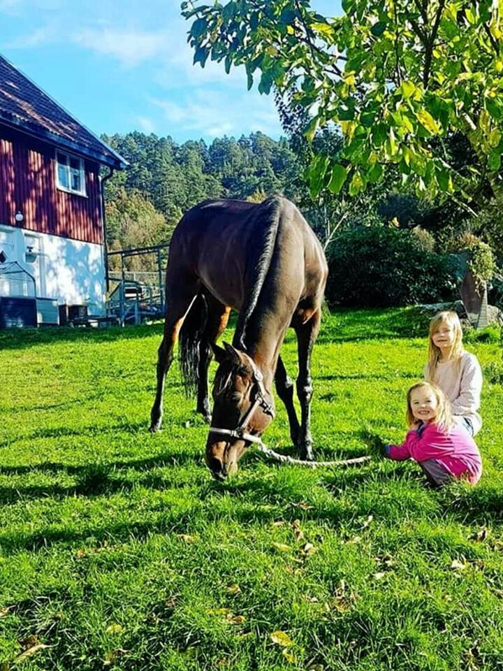 Elianne Akselsen gikk mor strømmen, hun tok med familien og flyttet fra bolifelt nær Kristiansand til småbruk i Songdalen. Foto: Privat.