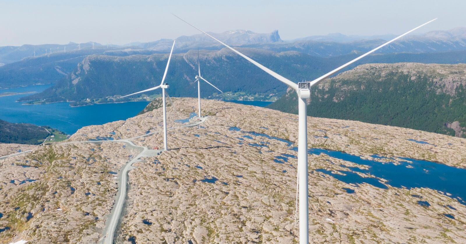De lange vindkraftbladene må være både lette og svært sterke for å kunne gjøre jobben med å fange opp vind som kommer fra alle retninger og i alle styrkegrader og gjøre det om til miljøvennlig energi. Her fra arbeidet med å montere vindmøller på Guleslettene vindpark like ved Florø, der det Totalt skal reises 47 vindmøller i dette området. Hvert tårn er 90 meter høyt. Levetid er 25–30 år. Foto: Tore Meek / NTB scanpix