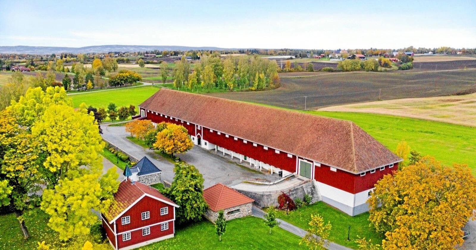 Staur Gård i Stange. Foto: Tegneby & Grønnerød Landbruksmegling