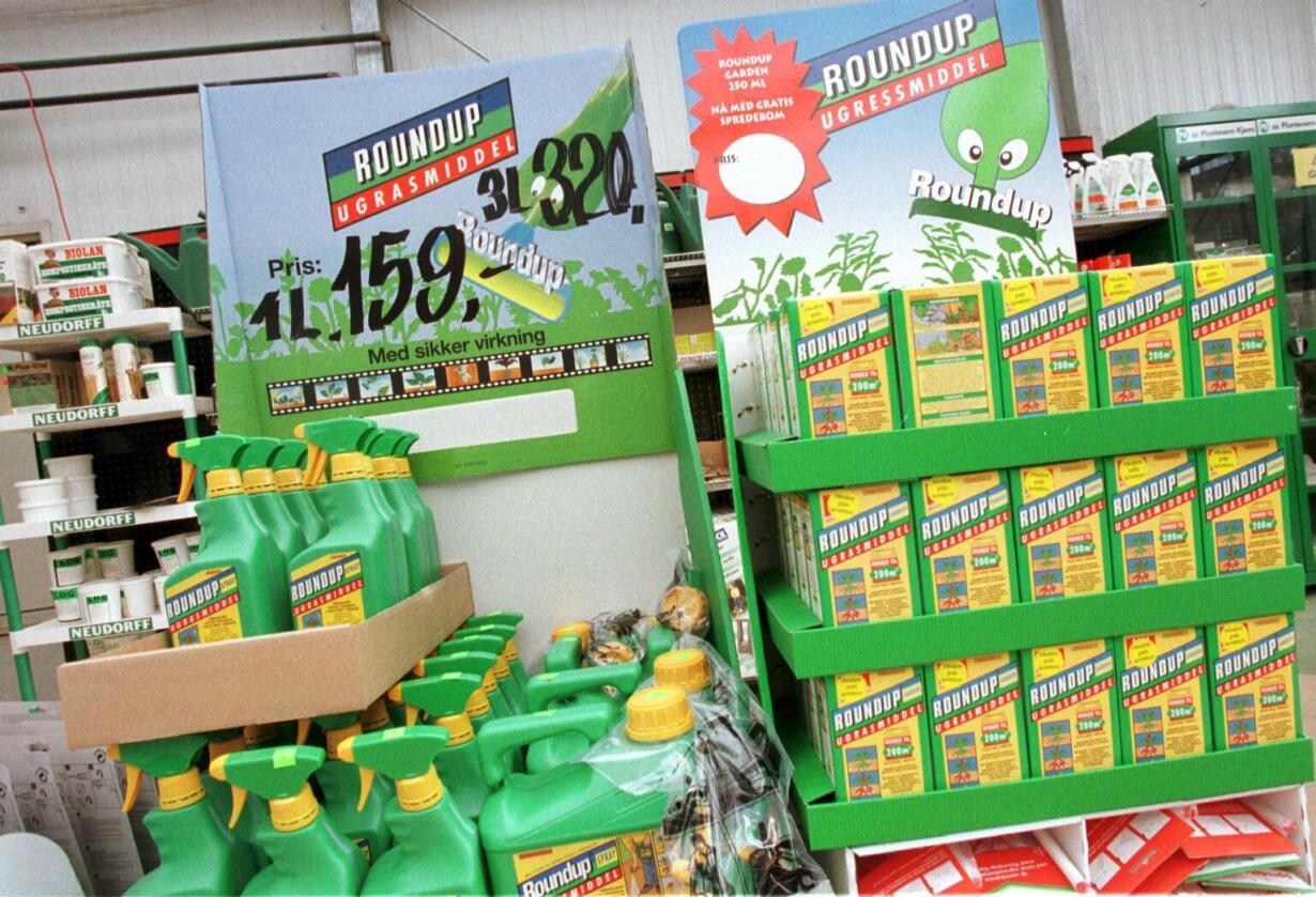 Kontroversielt: Roundup inneholder det omstridte plantevernmiddelet glyfosat. To professorer mener middelet er et eksperiment med folkehelsen. Foto: Siri Juell Rasmussen