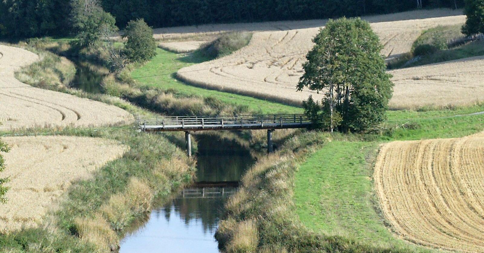 Negativt: 25 års undersøkelser av jordbruksbekker har vist at jordarbeiding om høsten påvirker vannkvaliteten negativt. Arkivfoto: Norsk Landbruk