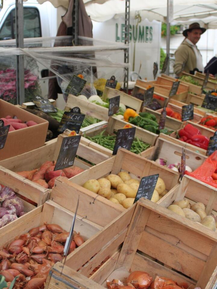 For de med en indre gartnerspire og drømmer om grønnsaksproduksjon, kan dyrking i småskala og direktesalg være et alternativ hvis det ikke er mulig å få kontrakt. Foto: Helle Cecilie Berger