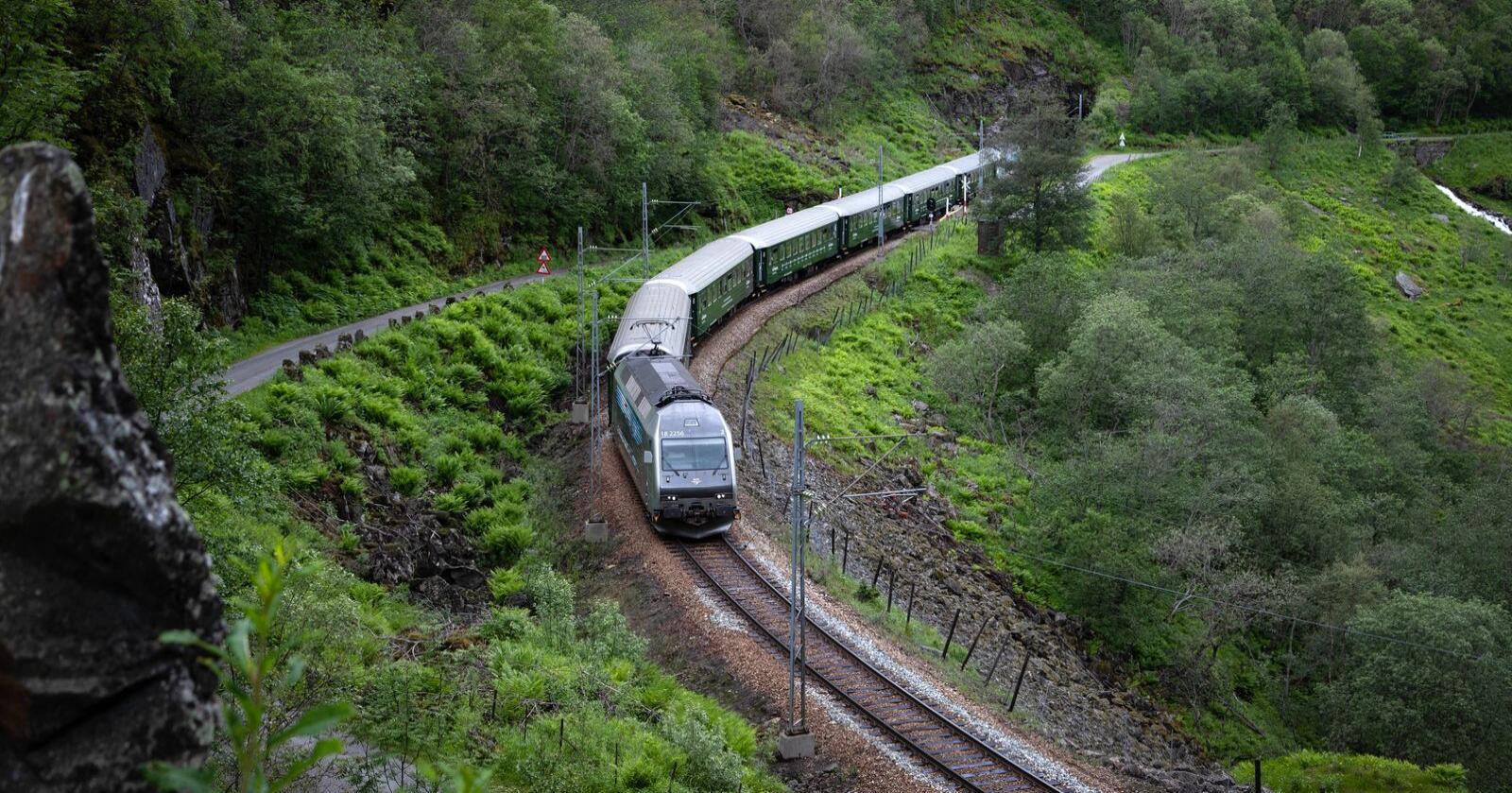 På tide: Det er på høg tid med høgfartstog i Noreg no, skriv forfattarane av innlegget. Foto: Mostphotos