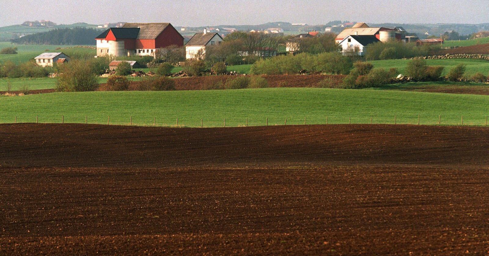 Dei seinare åra har talet på bønder gått ned i Noreg. Samstundes er talet på landeigarar stabilt. Det inneber at fleire leiger jorda dei driftar og med det kjem det òg ein del utfordringar. Foto: Halvard Alvik / NTB / NPK
