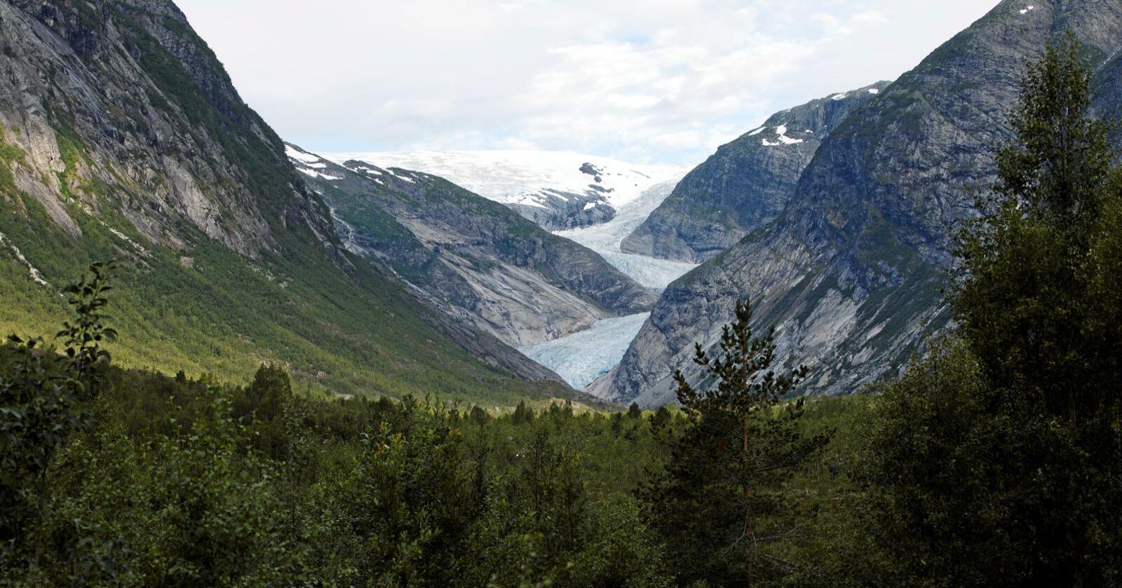 Jostedalsbreen Nasjonalpark har et areal på 1.315 kvadratkilometer og tilhører sju kommuner. Illustrasjonsfoto: Berit Roald / NTB scanpix