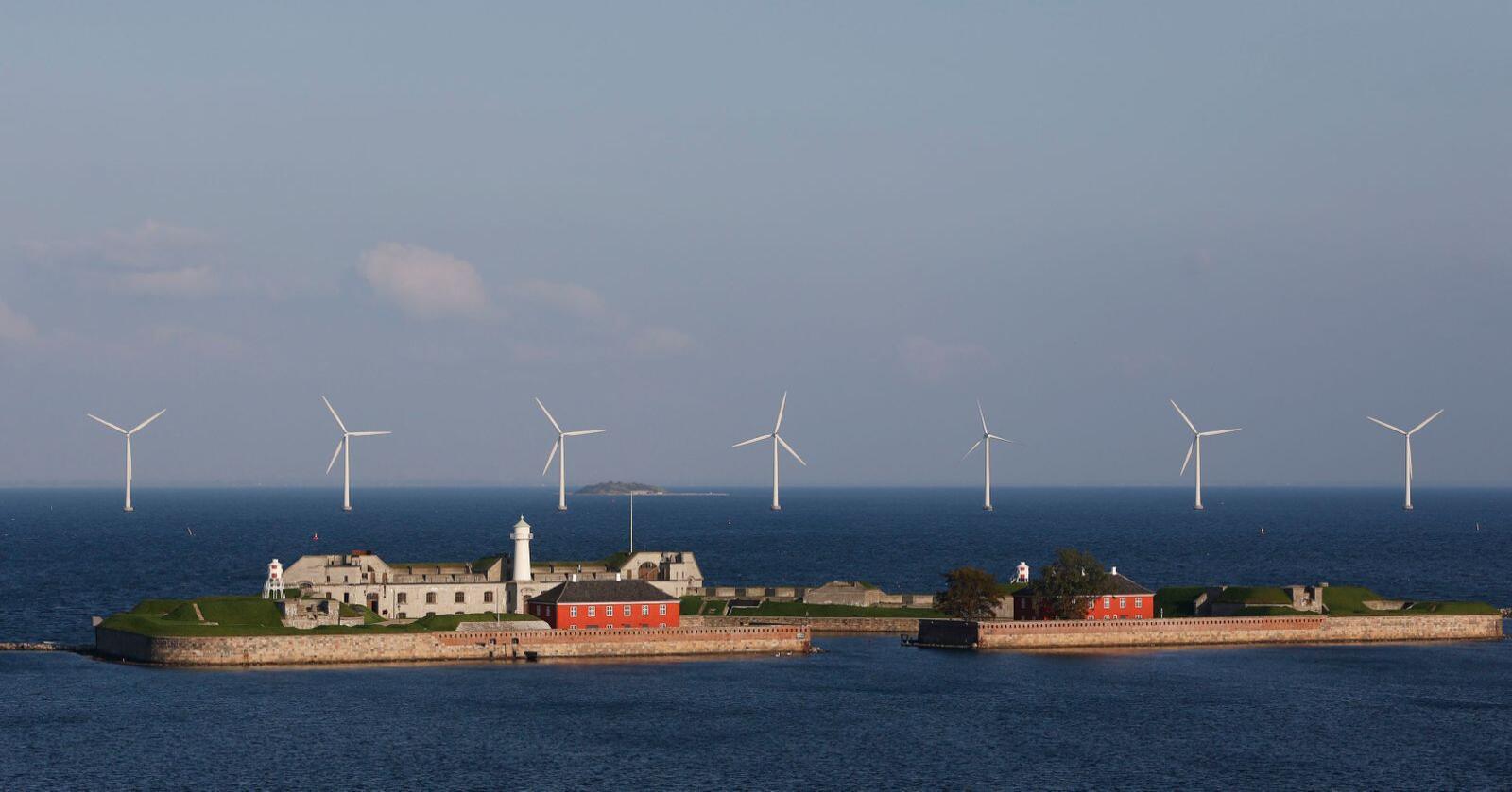 Havvind i Danmark, land som har vært tidlig ute i utviklingen av havvind kan ha fordeler. Foto: Paul Kleiven / NTB