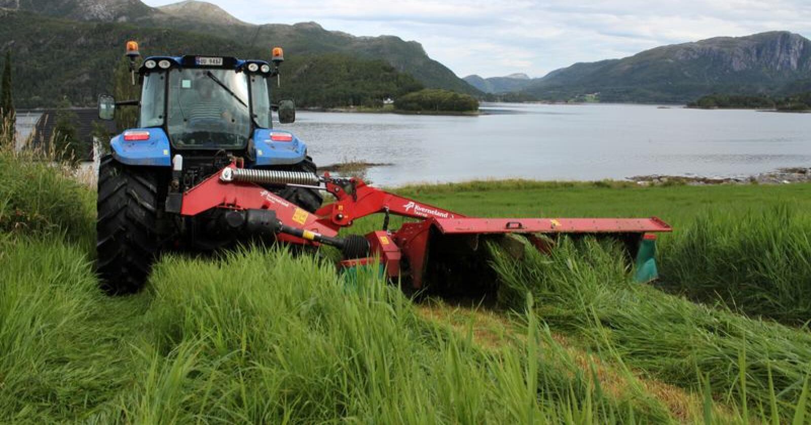 VARIASJONER: – Det varierer veldig hvor jevnt og luftig de ulike slåmaskinene sprer graset, sier Magnus Haugland i NLR Rogaland. Arkivfoto: Norsk Landbruk