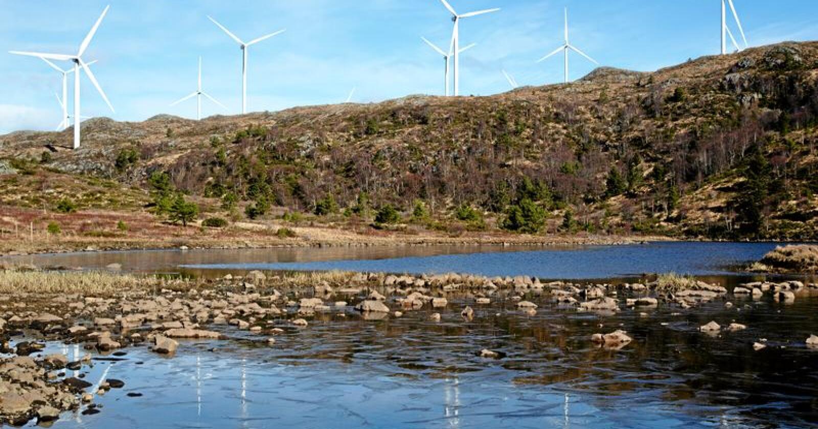 Statkraft meiner Noreg vil ha meir enn nok straum til å møte elektrifiseringsbølgja framover med dei vindkraftverka som har fått konsesjon. Foto: Jan Kåre Ness / NTB scanpix