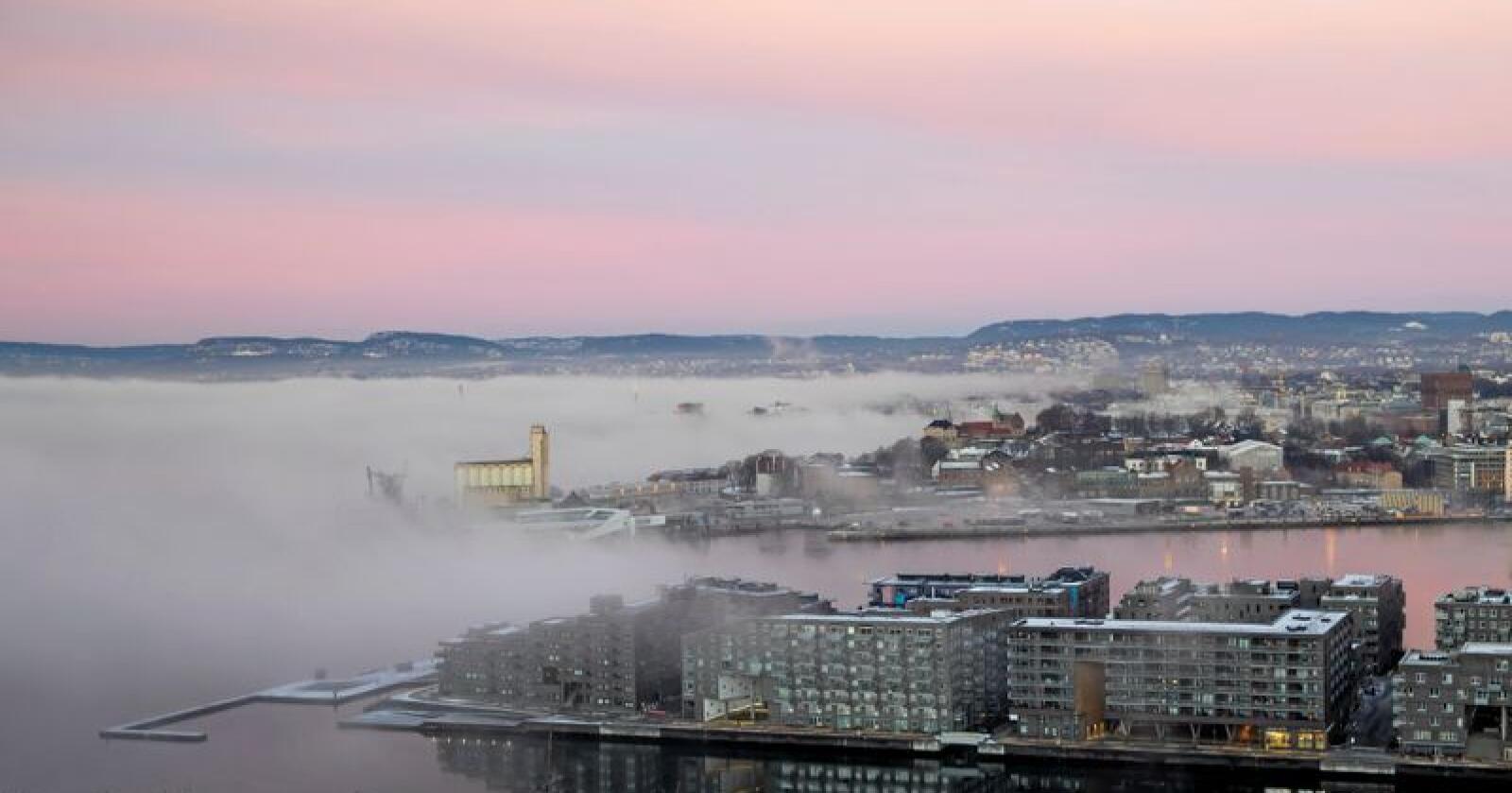 Boligblokkene på Sørenga og Vippetangen i Oslo sett fra Ekebergrestauranten. Foto: Håkon Mosvold Larsen / NTB scanpix
