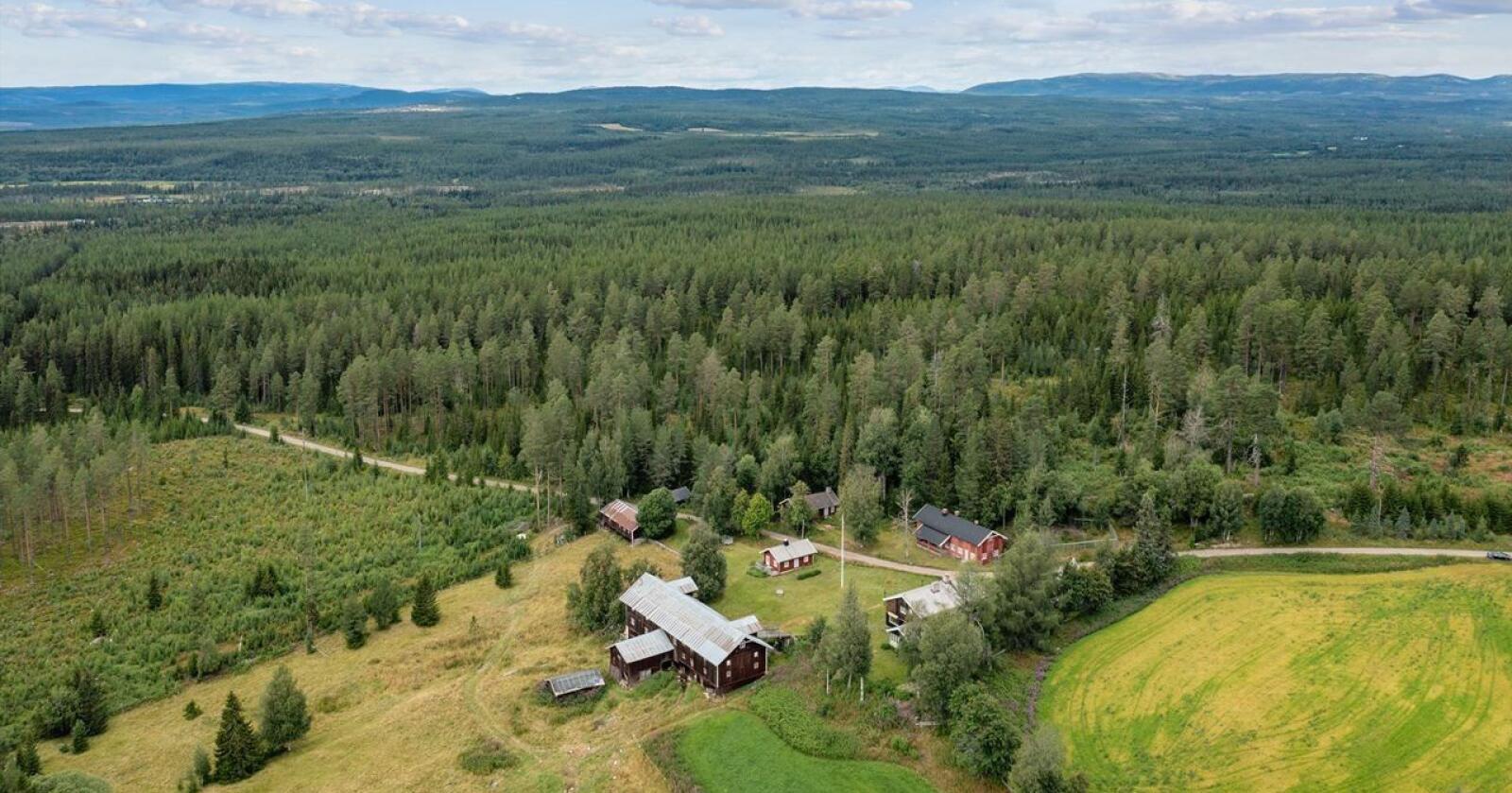 Nedre Tenaasen er nå lagt ut til salgs for 61 millioner kroner. Foto: Eiendomsmegler 1