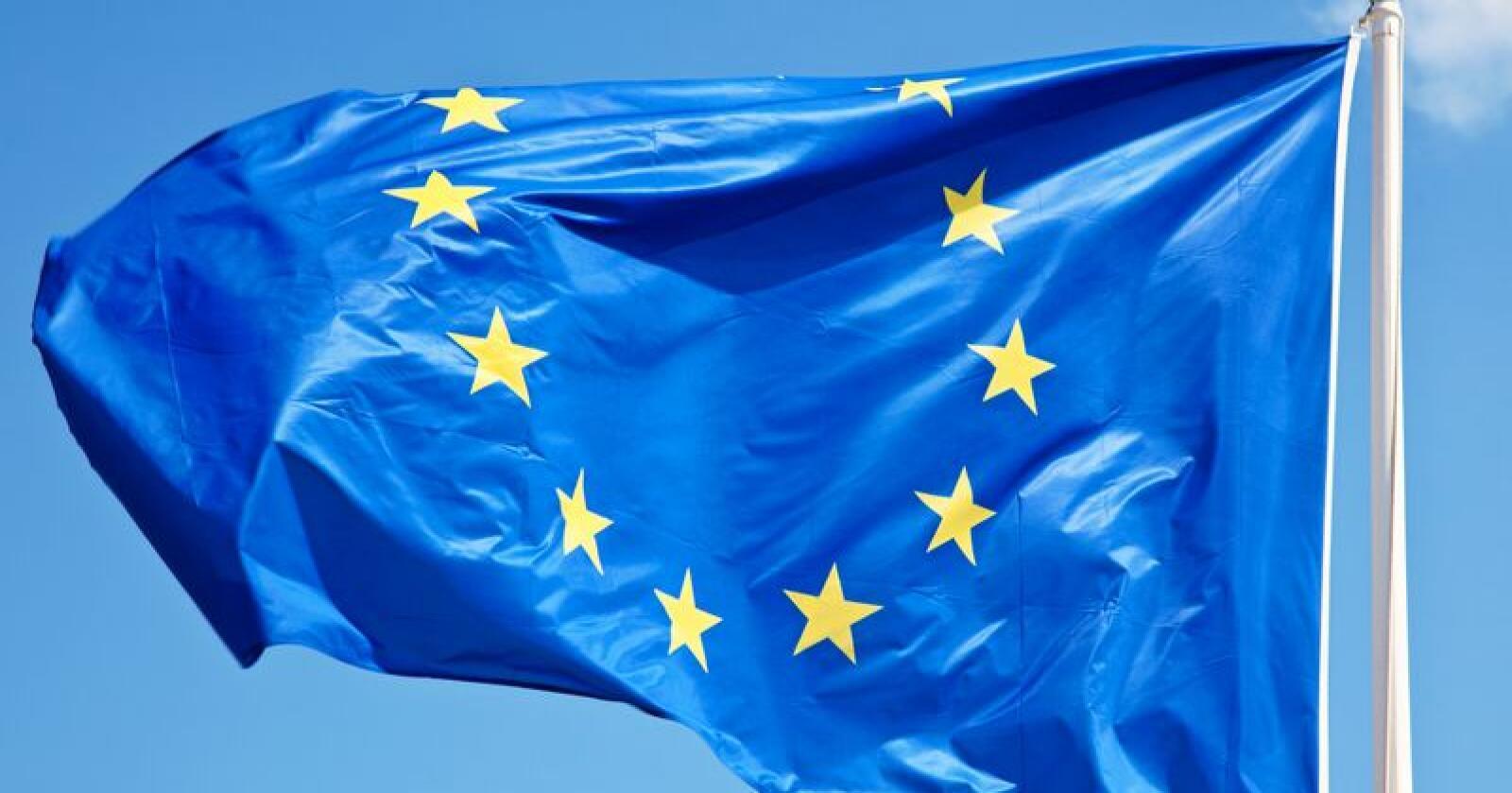 63 prosent seier dei er mot norsk EU-medlemskap i ei ny måling gjort for Nationen og Klassekampen. Foto: Mostphotos