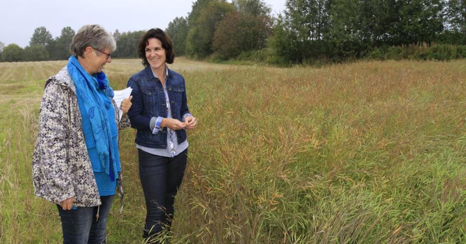 Dersom vekstskiftet optimaliseres, bør det være mulig å øke produksjonen av protein på kornarealene med mer enn 10 prosent, mener forsker Unni Abrahamsen (t.v.) ved Nibio Apelsvoll. Forsker Wendy Waalen til høyre. (Arkivfoto)