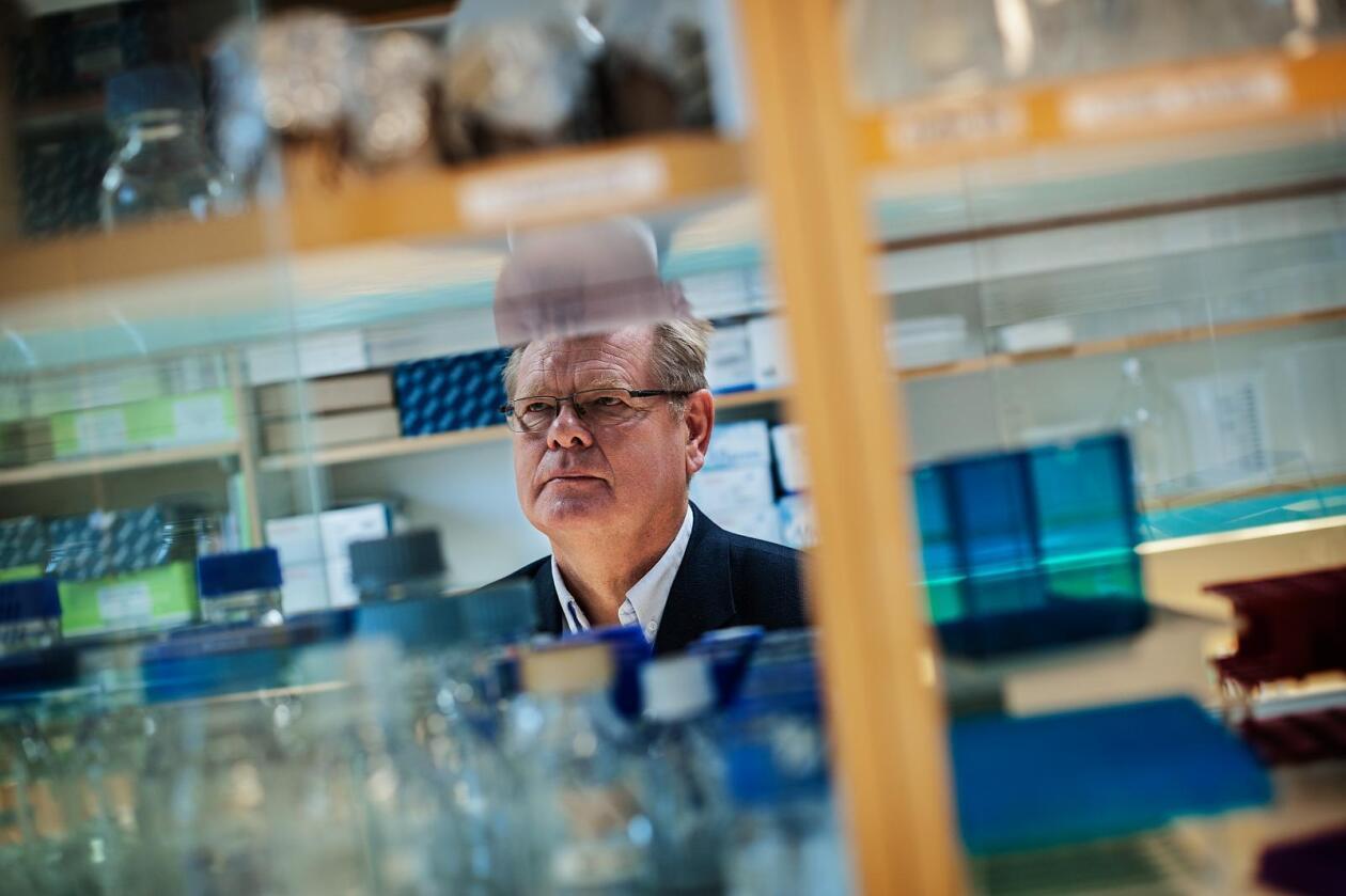 En varm stekepanne er ikke nok for å gardere seg mot den antibiotikaresistente kyllingbakterien ESBL, ifølge professor Ørjan Olsvik ved Universitetet i Tromsø (UiT). Foto: Eirik Bjørklund