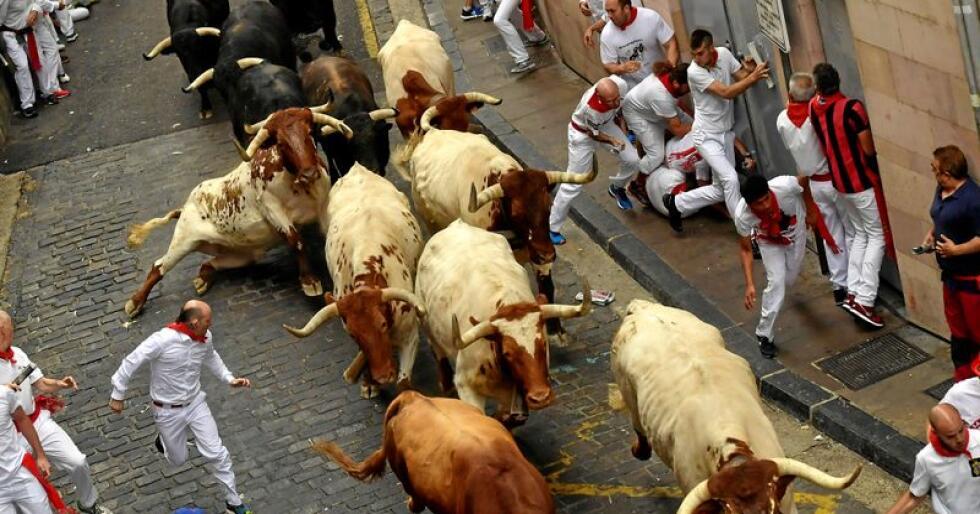 Okser og mennesker løper i gatene i Pamplona. Menneskene gjør det vel å merke frivillig. Foto: AP Photo / Alvaro Barrientos / NTB Scanpix