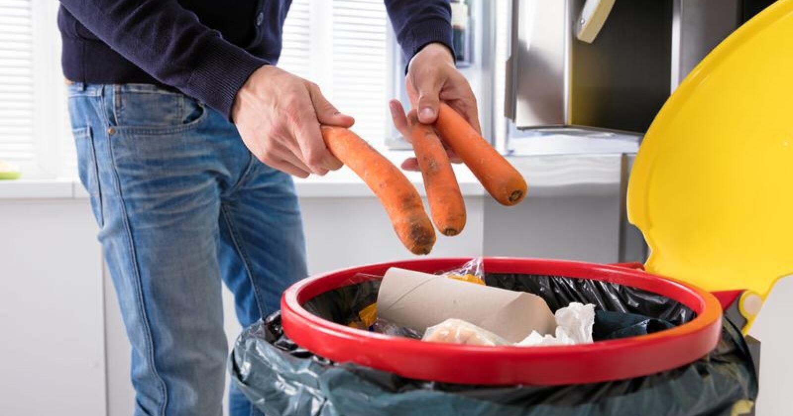 Matkasting: Det er ubehagelig å se all maten som blir kastet, skriver Torleik Svelle. Foto: Andrey Popov / Mostphotos