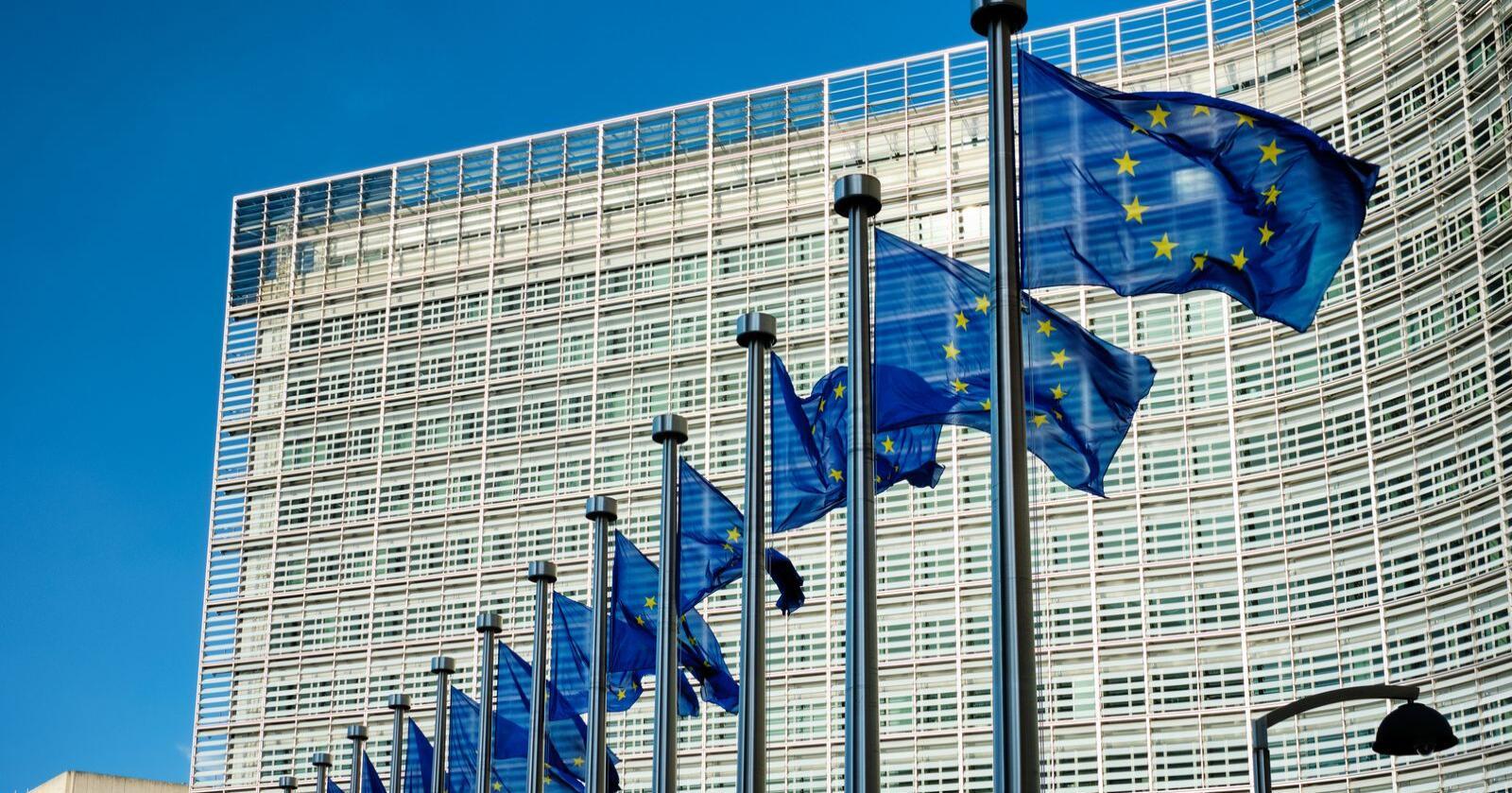 Like muligheter: Det bor om lag 87 millioner mennesker med nedsatt funksjonsevne i EU. På lik linje som andre, har de rett på de samme arbeidsbetingelsene og mulighetene, skriver Thierry Béchet. Foto: Dmitry Rukhlenko / Mostphotos