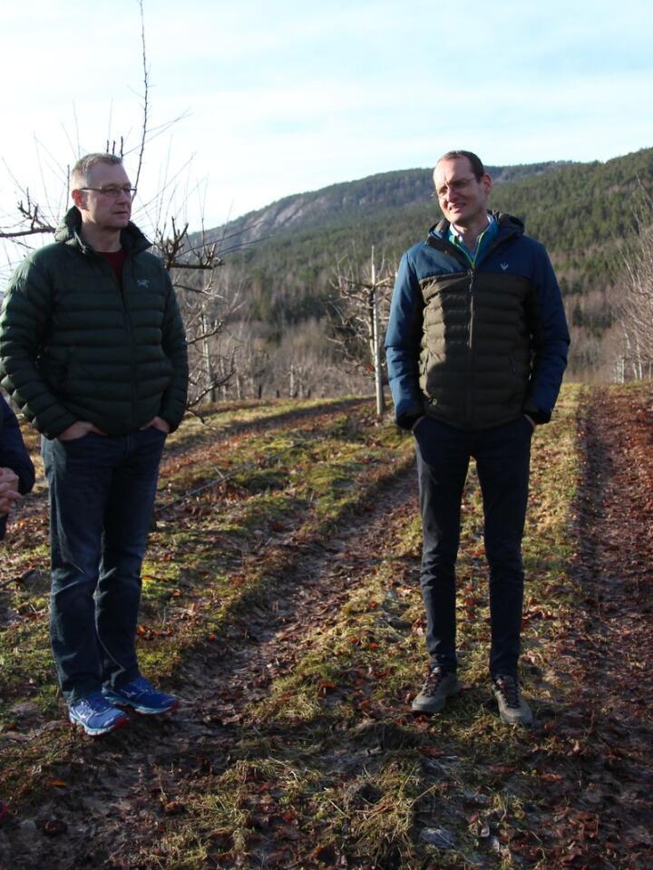 SAGAPLANT: Helen Otter Søgnen, Asle Michael Fremgård og Peter Van Der Ende jobber med å sikre sykdomsfrie planter til norske bærprodusenter.