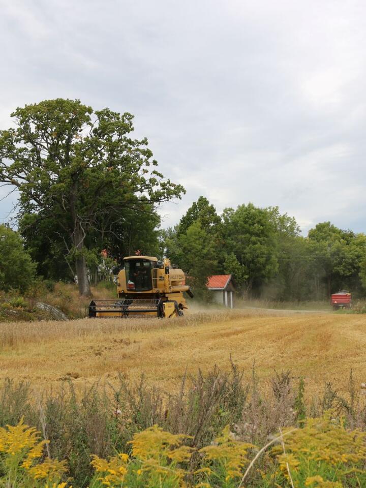 ARRONDERING: 580 dekar jord, fordelt på 26 skifter, vitner om at arronderinga av jorda på Nesodden er en utfordring.