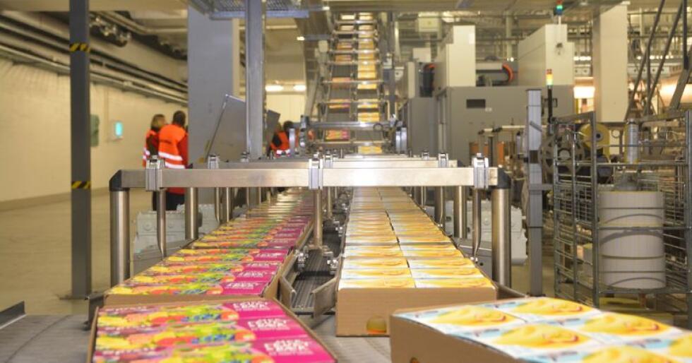Volumnedgangen i søtmelk, yoghurt og matlagingsprodukter fortsatte i perioden mai-august, men det var noe bedre utvikling på ost og smaksatte melkedrikker. (Foto: Anders Sandbu)