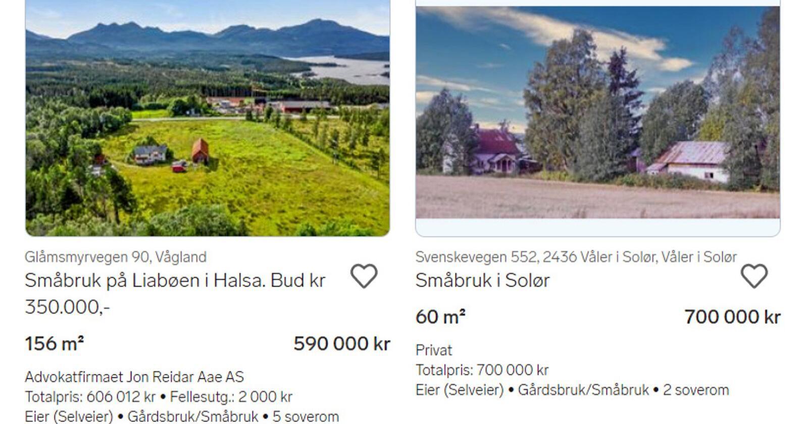 """På Finn.no er det i øyeblikket 166 annonser under søket """"småbruk"""". Skjermdump: Finn.no."""