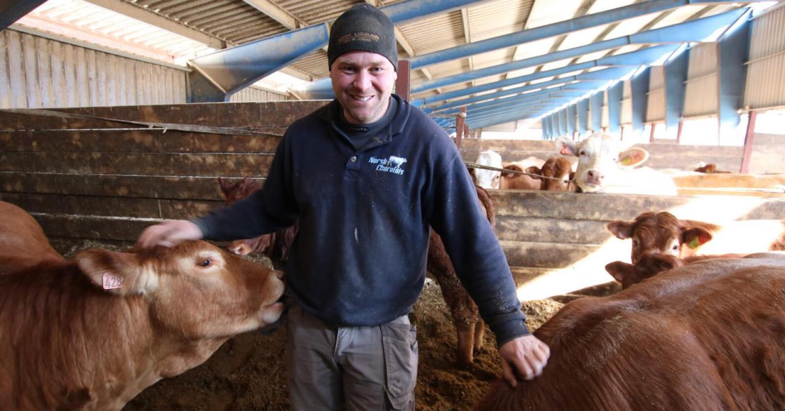 Mer støtte: Kristian Hovde er nestleder i Tyr. Han mener ammekubøndene må ha et skikkelig løft i årets jordbruksoppgjør. (Foto: Dag Idar Jøsang)