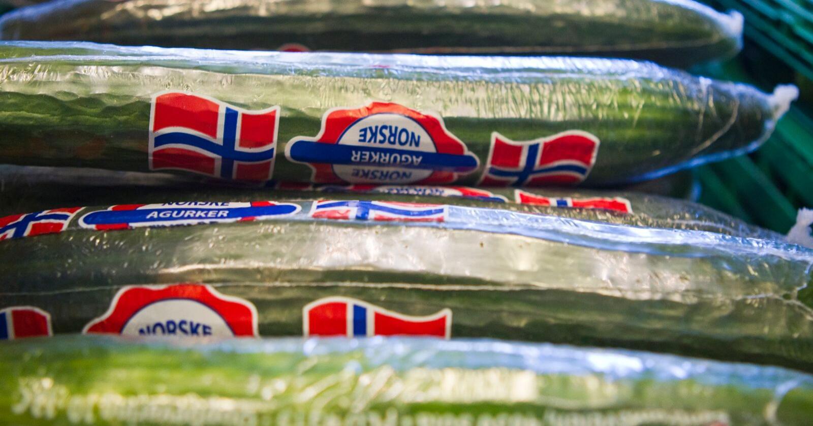 Grønnsakbønder frykter færre norske agurker på grunn av strenge innreiseregler. Foto: Vegard Grøtt / NTB