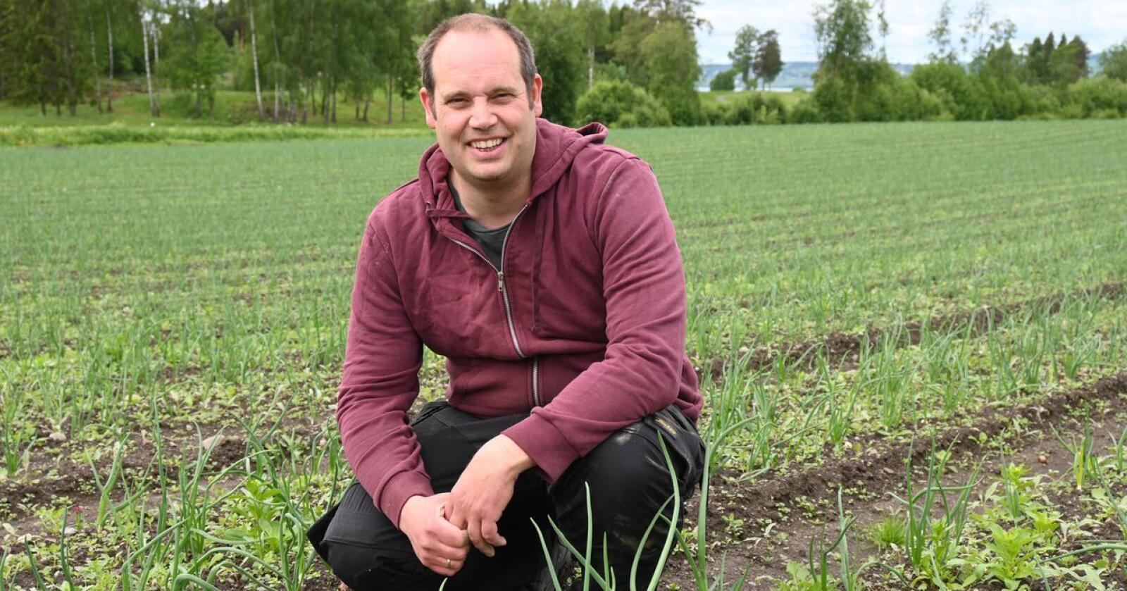 Nils Olve Gillund driver familiegården i Stange med økologisk og konvensjonell løkproduksjon, i tillegg til blomkål. (Arkivfoto)