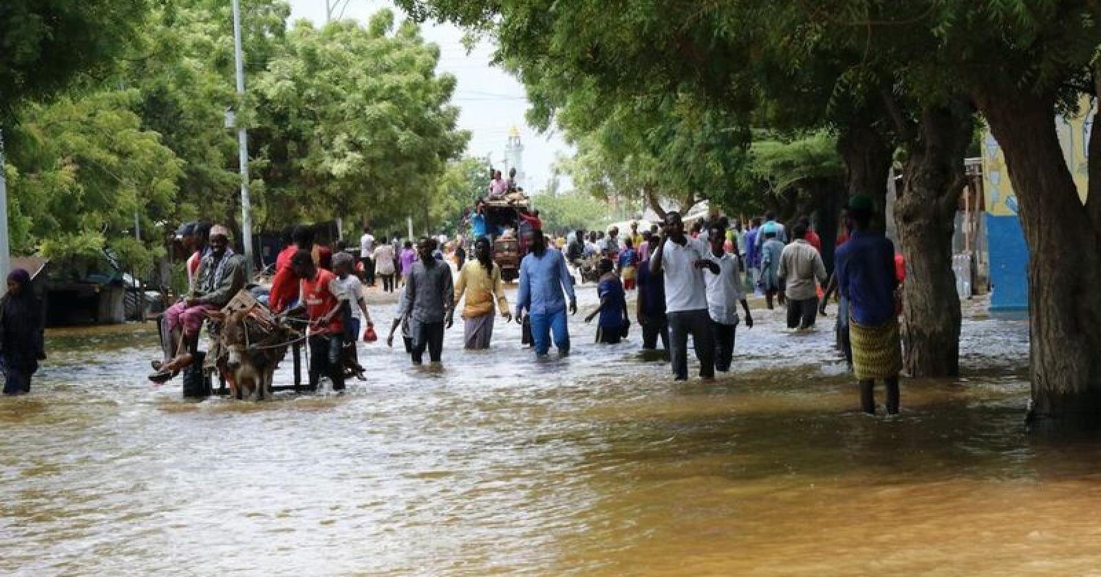 Deler av Kenya, Somalia (bildet) og Sør-Sudan er rammet av flom, som ifølge Røde Kors har drevet hundretusener på flukt. Foto: NRC / NTB scanpix
