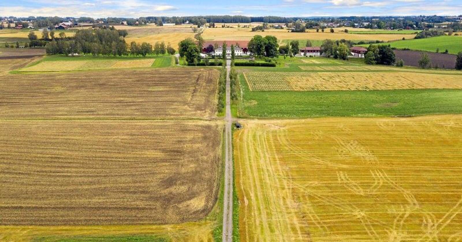Staur Gård i Stange har store områder med dyrket mark. Foto: Tegneby & Grønnerød Landbruksmegling